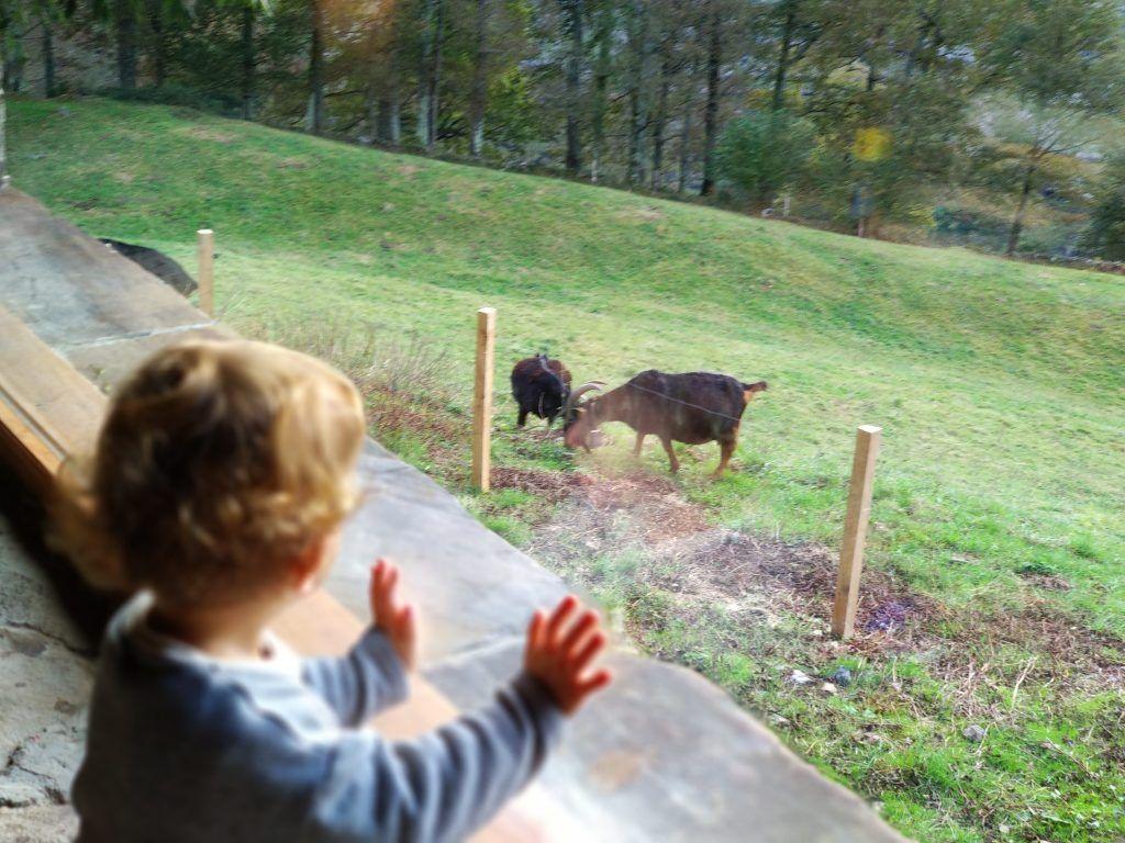 Escapada rural en familia en los valles pasiegos