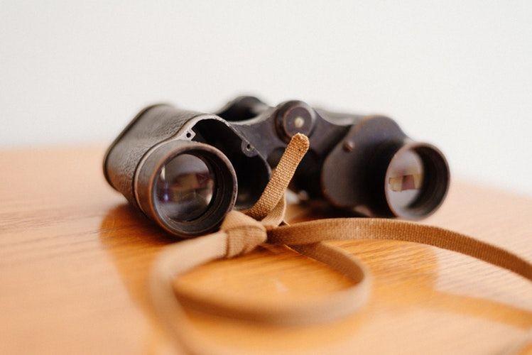 Es fundamental llevar prismáticos para observar la fauna