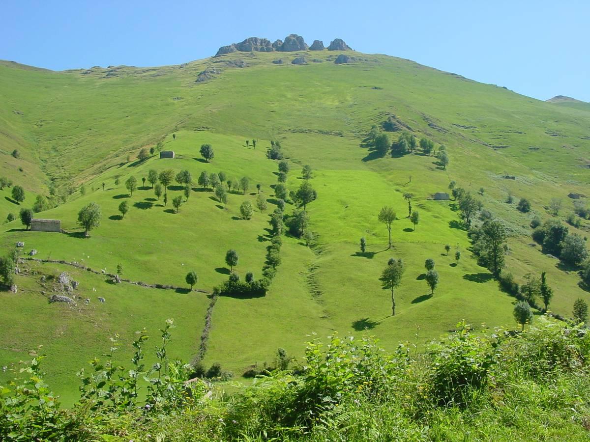 Paisaje en San Roque de Riomiera